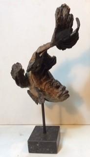 Pieter VandenDaele - Small Koicarp