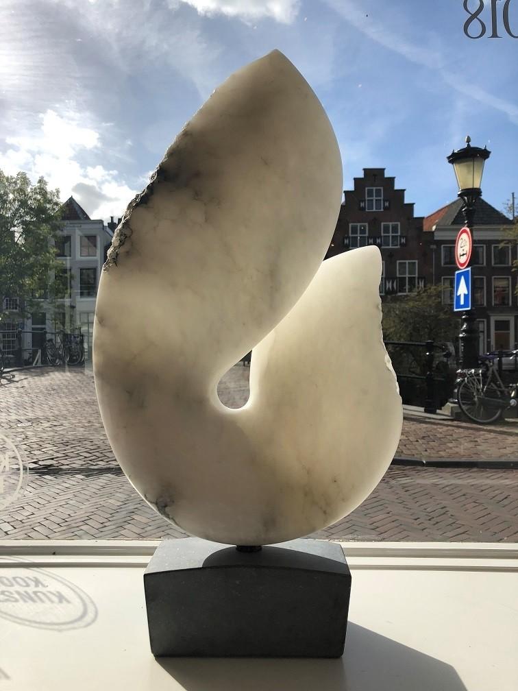Guy Janssen - Wasdom