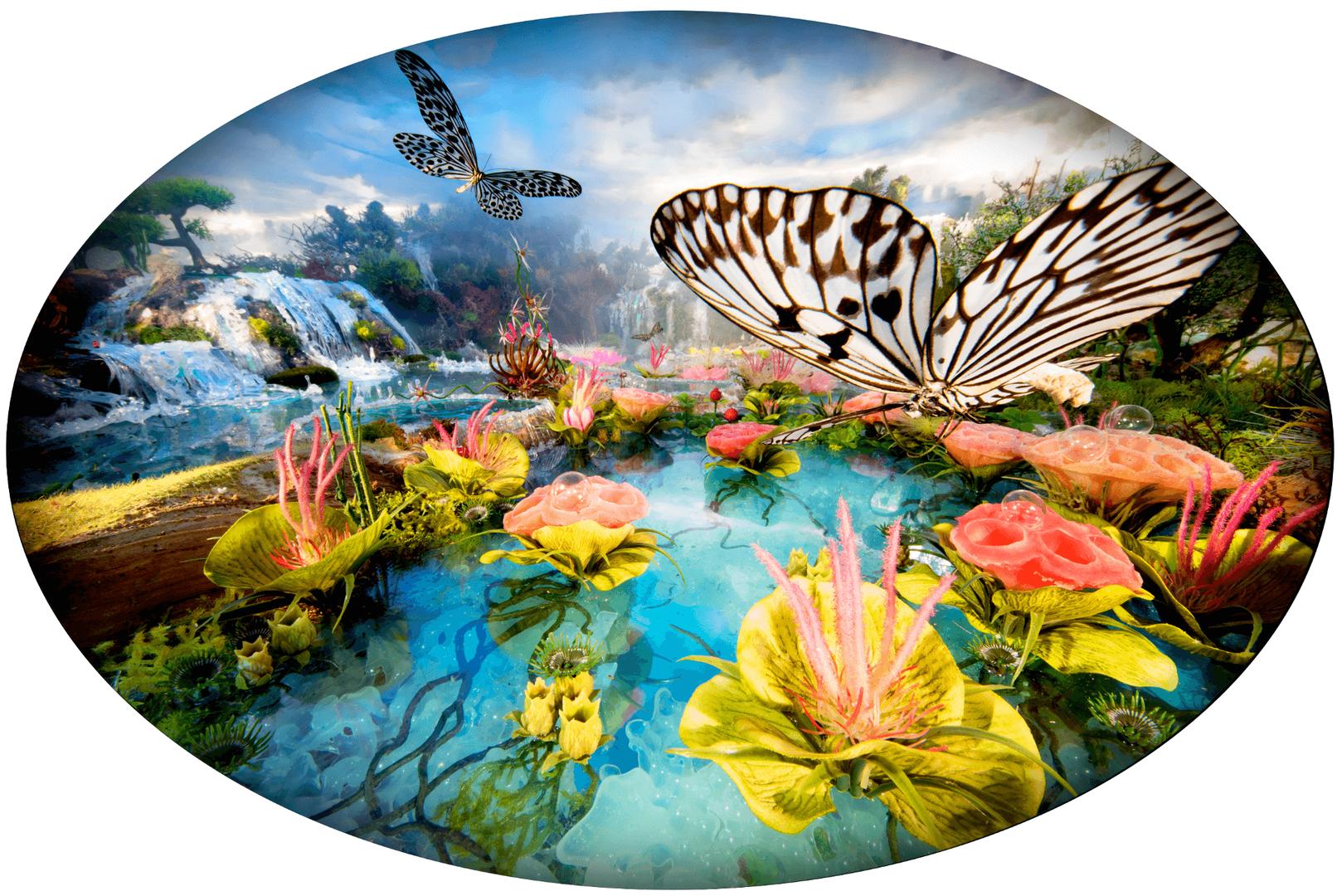 Bethany de Forest - Waterfall butterflies 瀑布蝴蝶