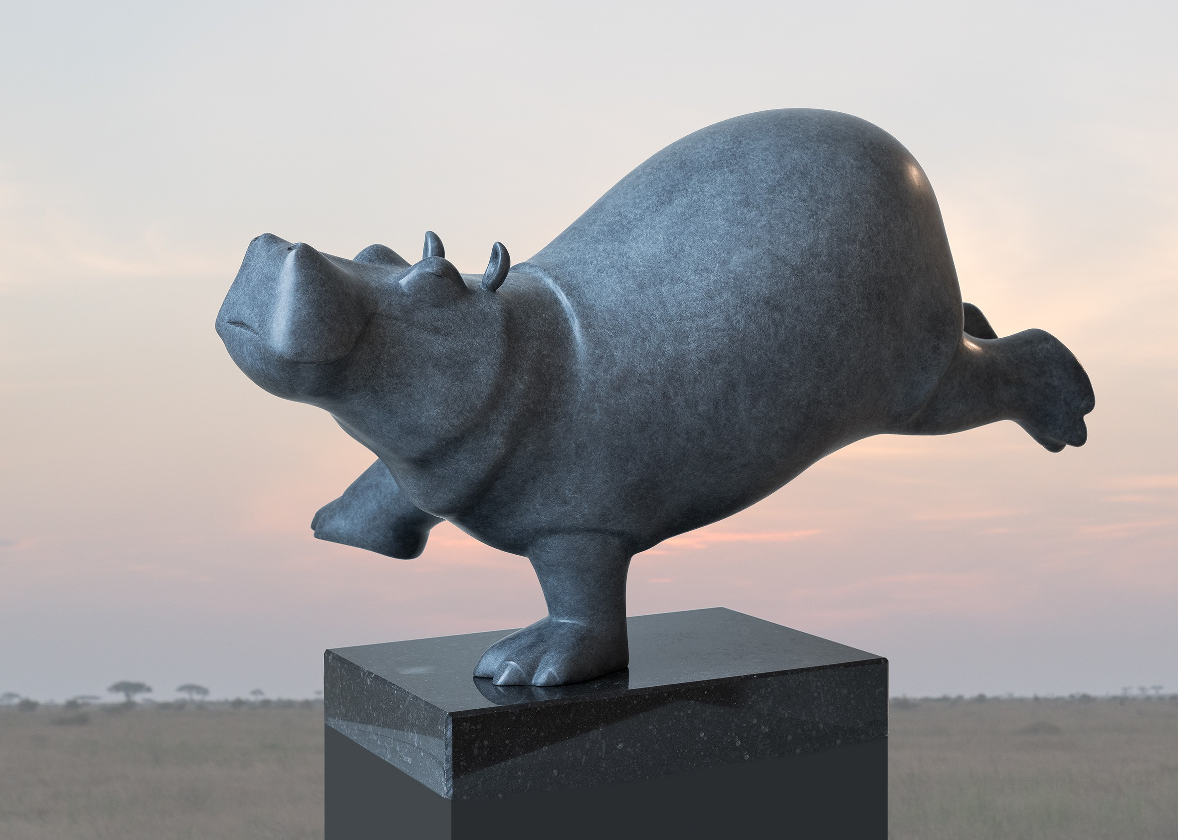 Evert den Hartog | Dansende hippo