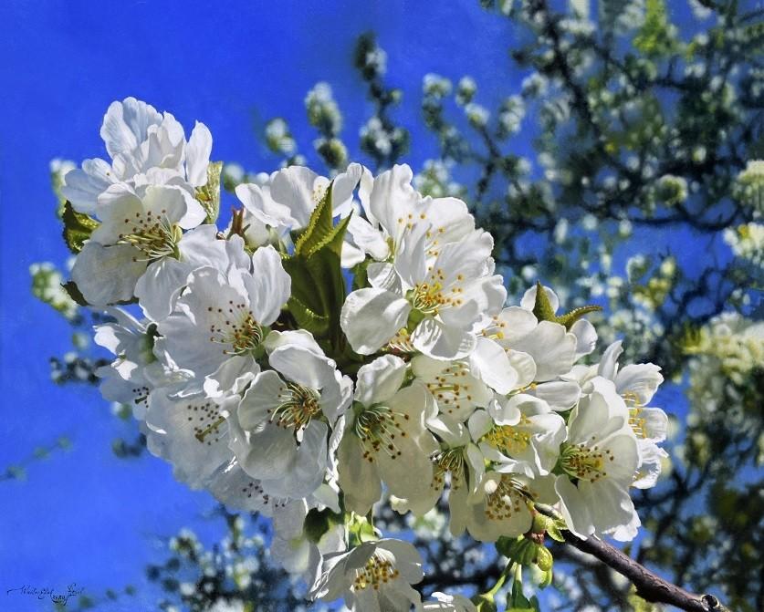 Walter Elst | Een schitterend voorjaar (Sold)