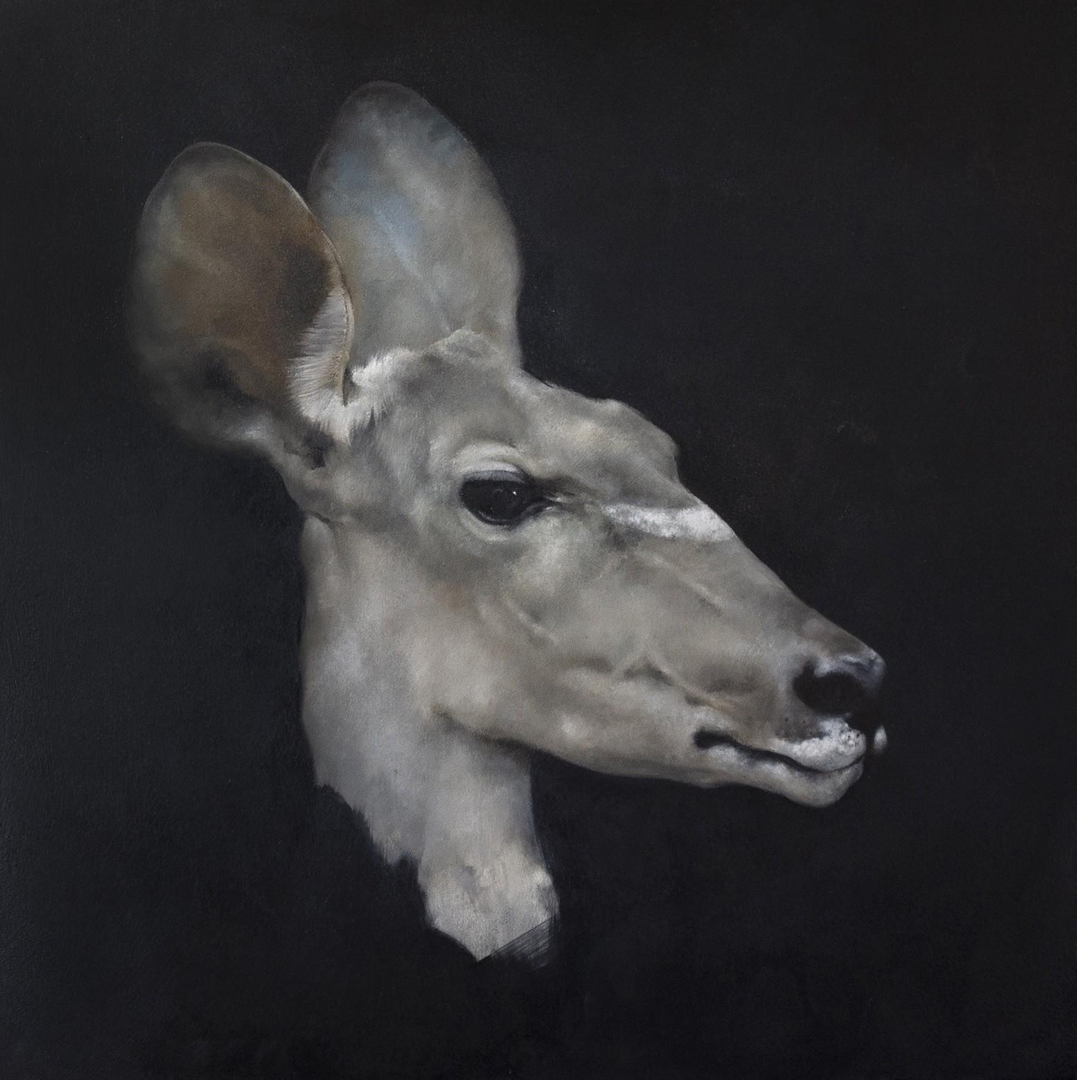 Justin Coburn   Antelope Head