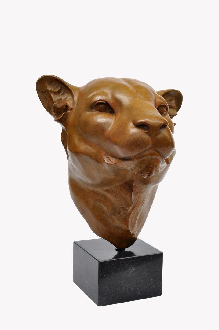 Renee Marcus Janssen | Luipaard