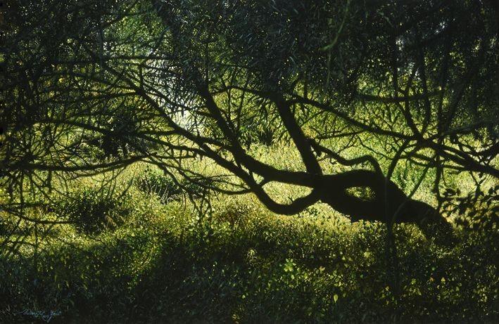 Walter Elst   Midsummer shadow