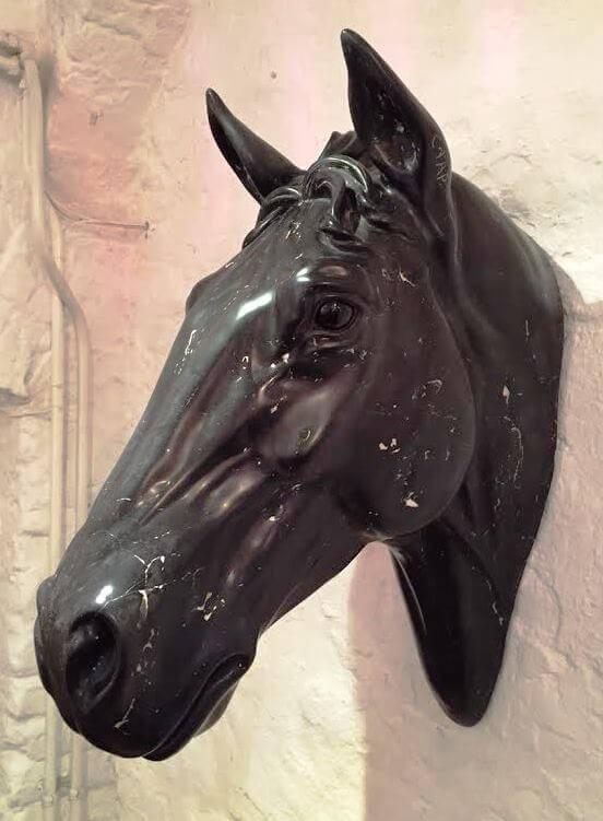 Chris Tap - Paardenhoofd