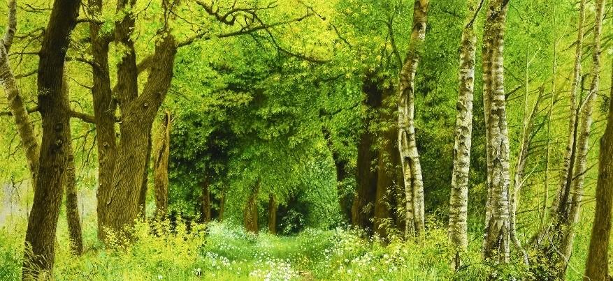 Walter Elst | Spring is in the air (Optie)