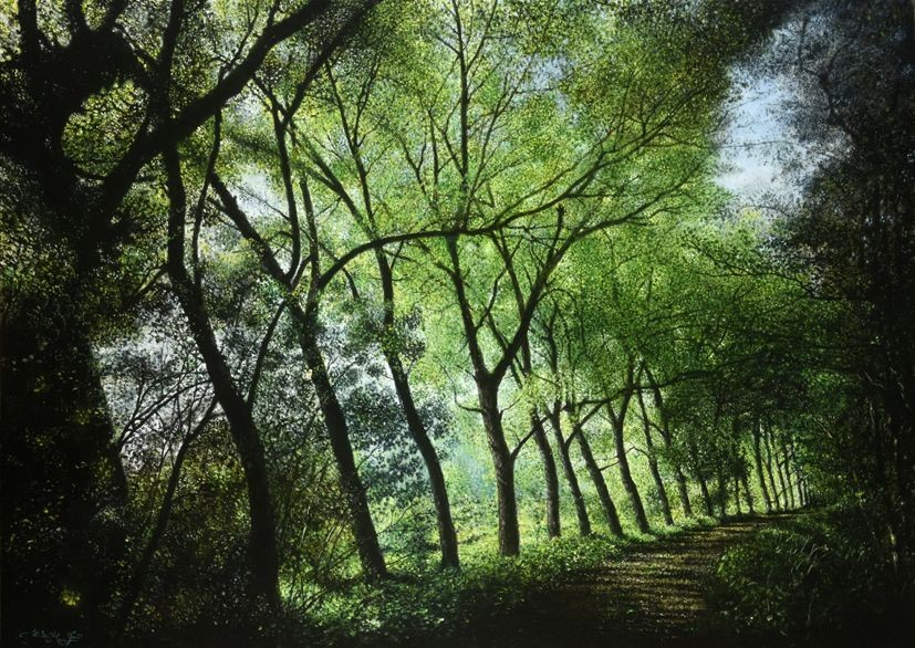 Walter Elst | Vibrerend licht