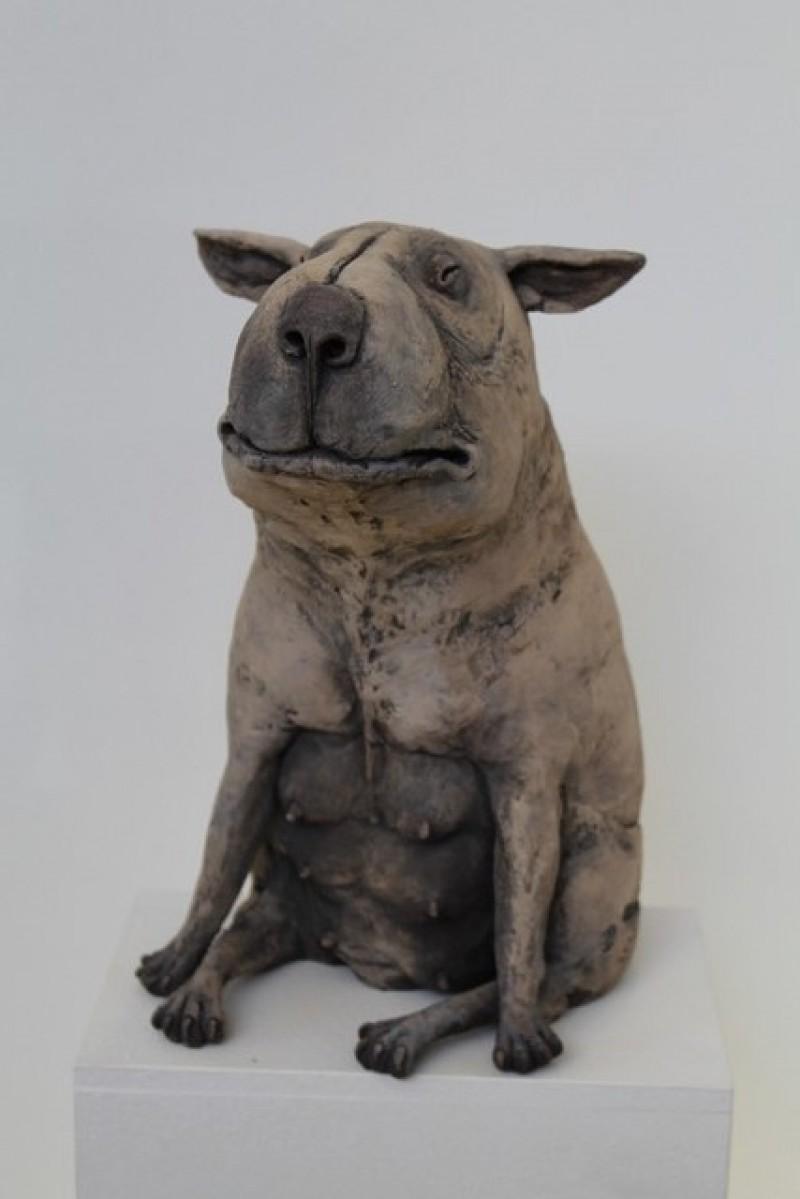 Peter Vanbekbergen - Hond 2 - 2019