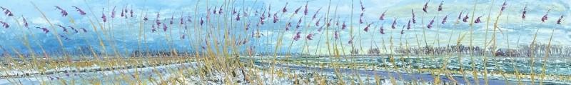 Gertjan Scholte-Albers - Sneeuw en riet