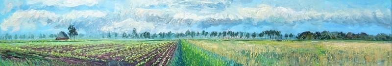 Gertjan Scholte-Albers - Suikerbieten en tarwe