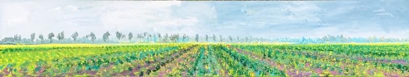 Gertjan Scholte-Albers - Mosterdzaad heiig