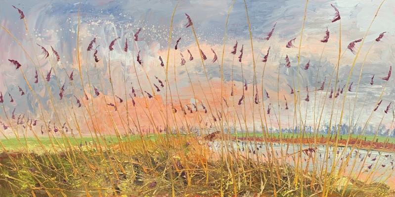 Gertjan Scholte-Albers - Riet oranje in lucht