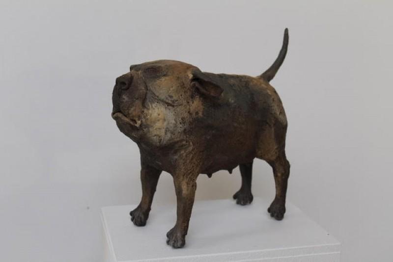Peter Vanbekbergen - Hond 3 - 2018