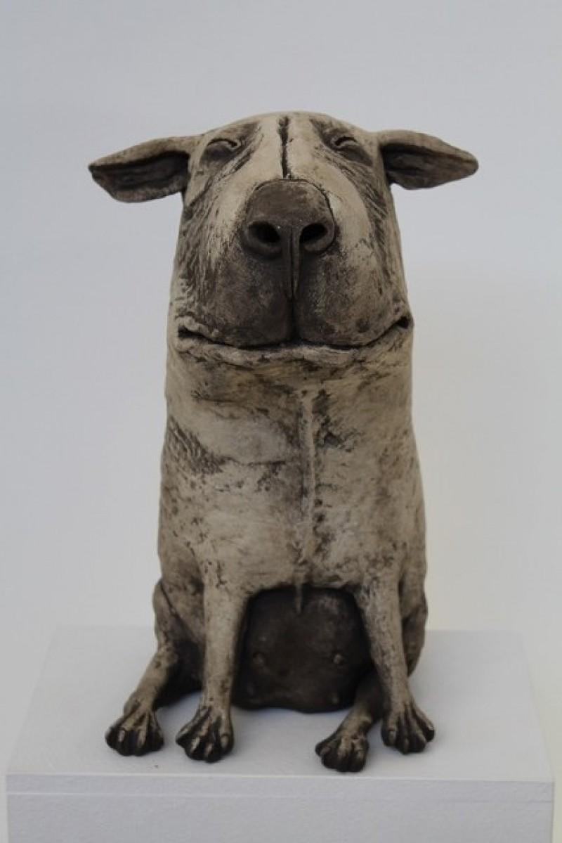 Peter Vanbekbergen - Hond 4 - 2019