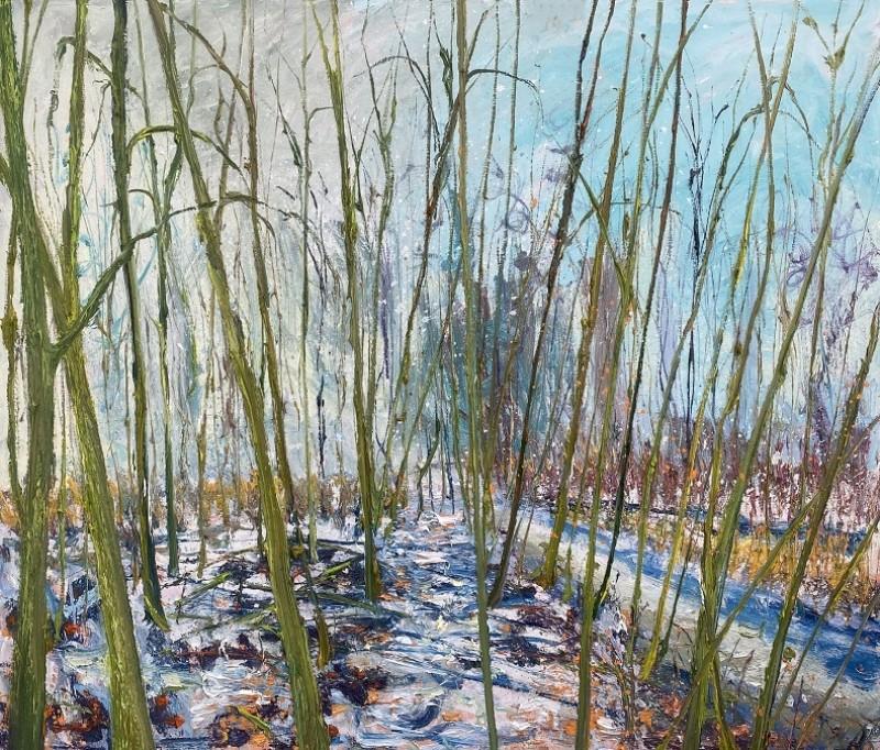Gertjan Scholte-Albers - W-Sneeuw