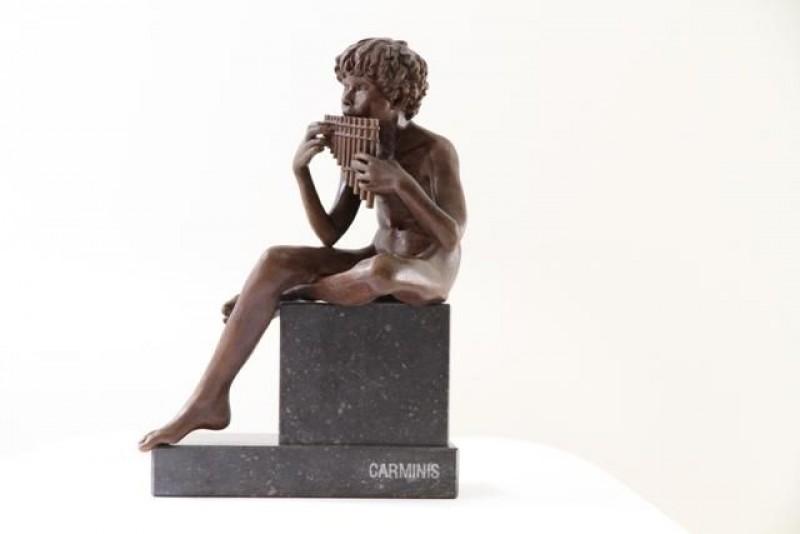 Wim van der Kant - Carminis