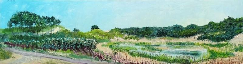 Gertjan Scholte-Albers - Duinen bij Katwijk