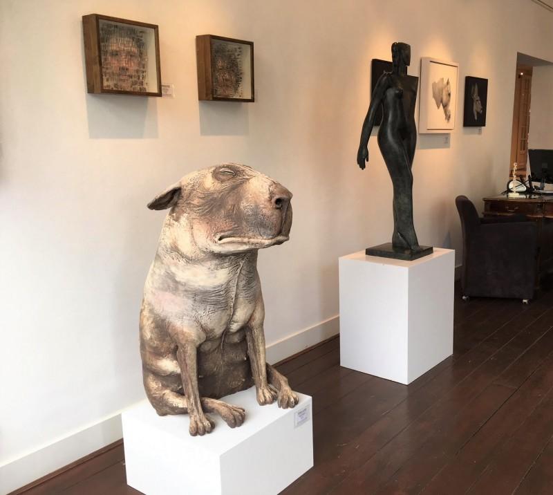 Peter Vanbekbergen - Grote hond 2019