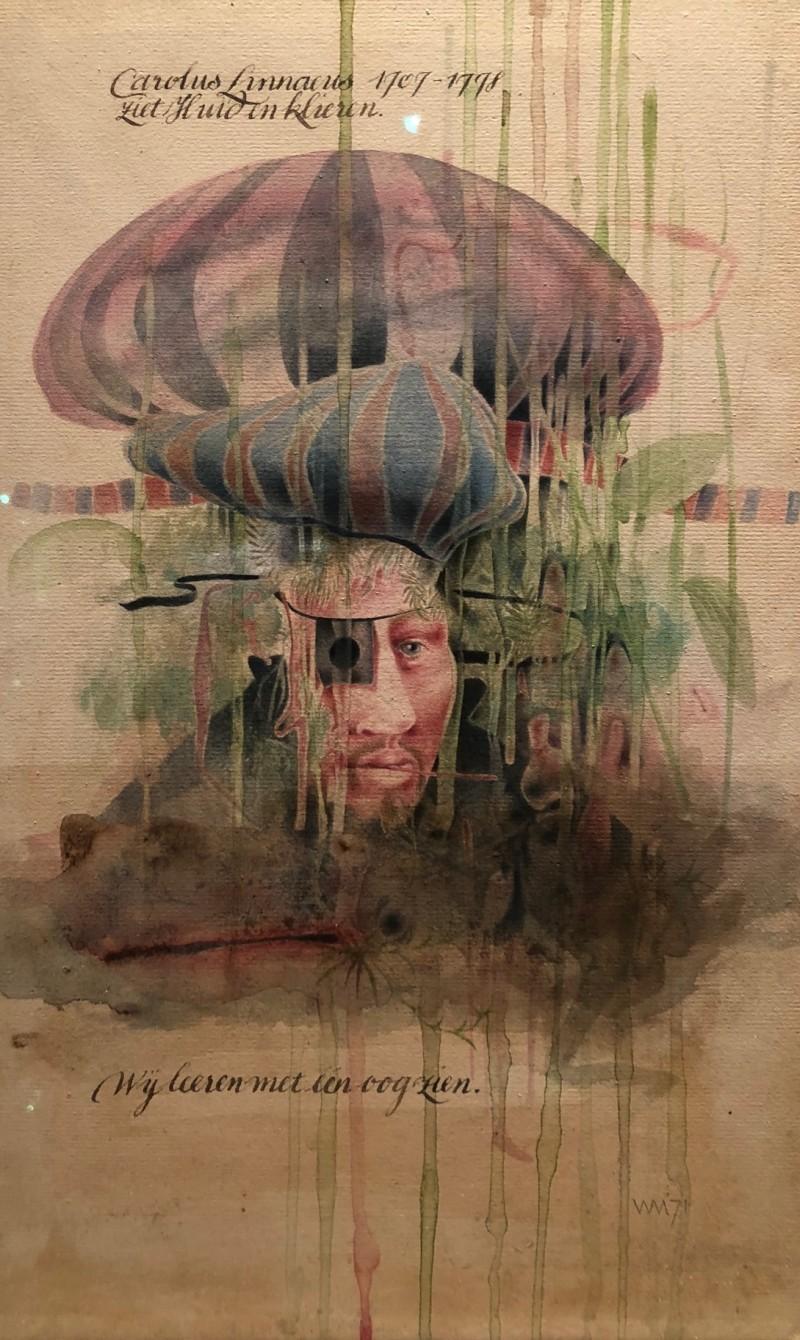 Wout Muller † - Wij leren met een oog zien