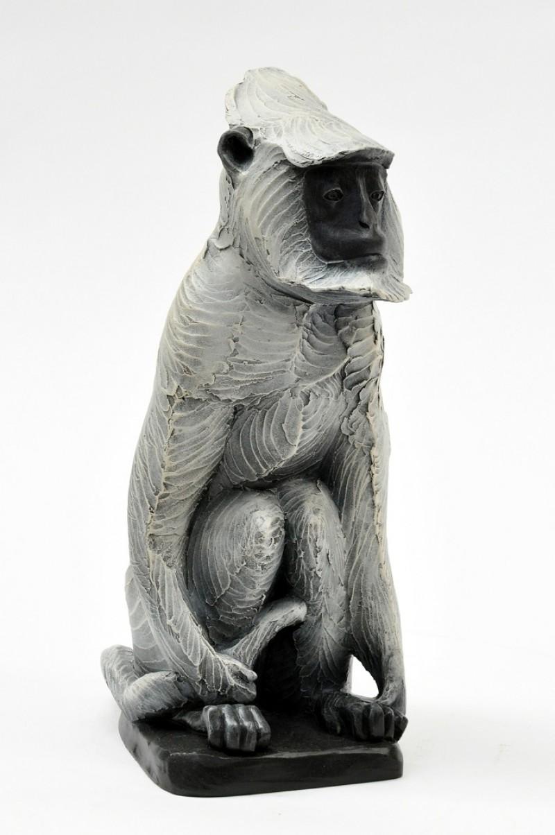 Renee Marcus Janssen - Langur aap