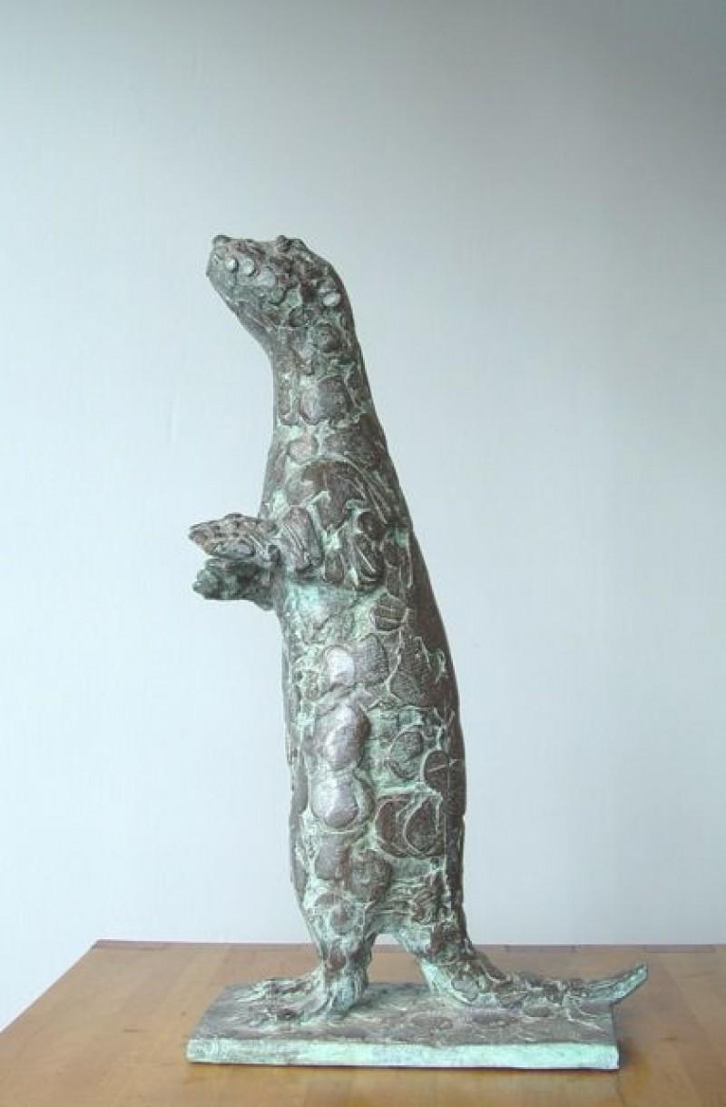 Coba Koster - Otter