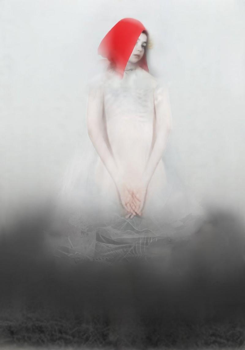 Barbara de Vries - Roodkapje
