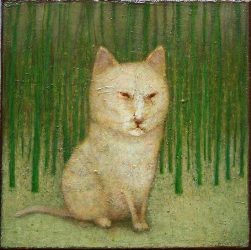 José van Kleef - Witte kat