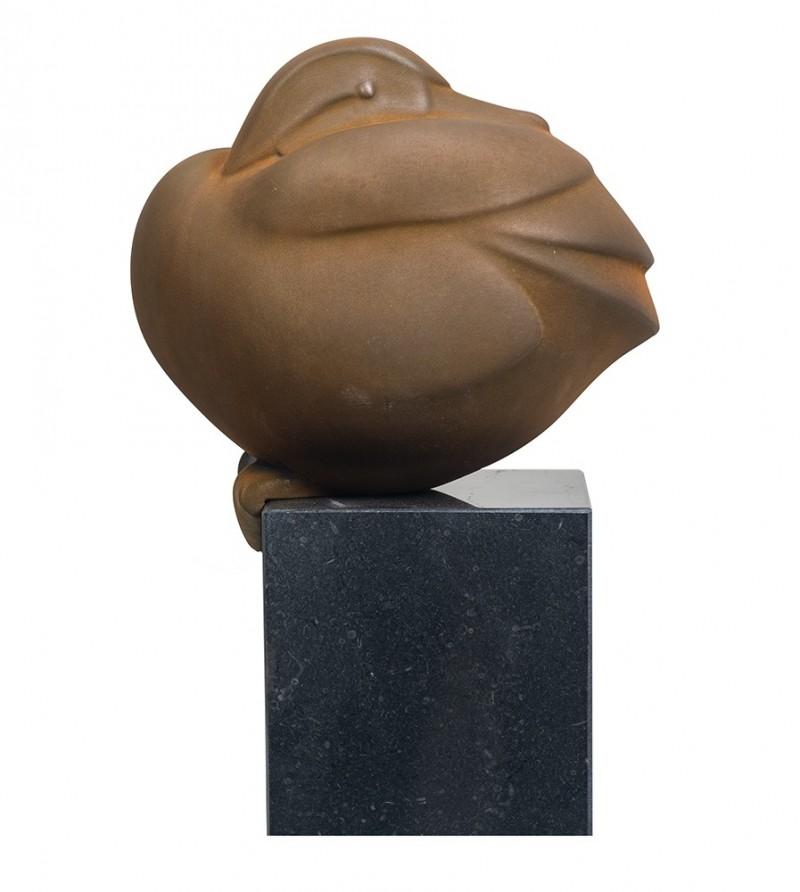 Evert den Hartog - Zittend eendje
