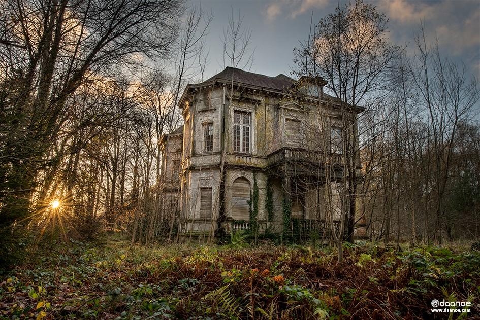 Daanoe - House of Treasures