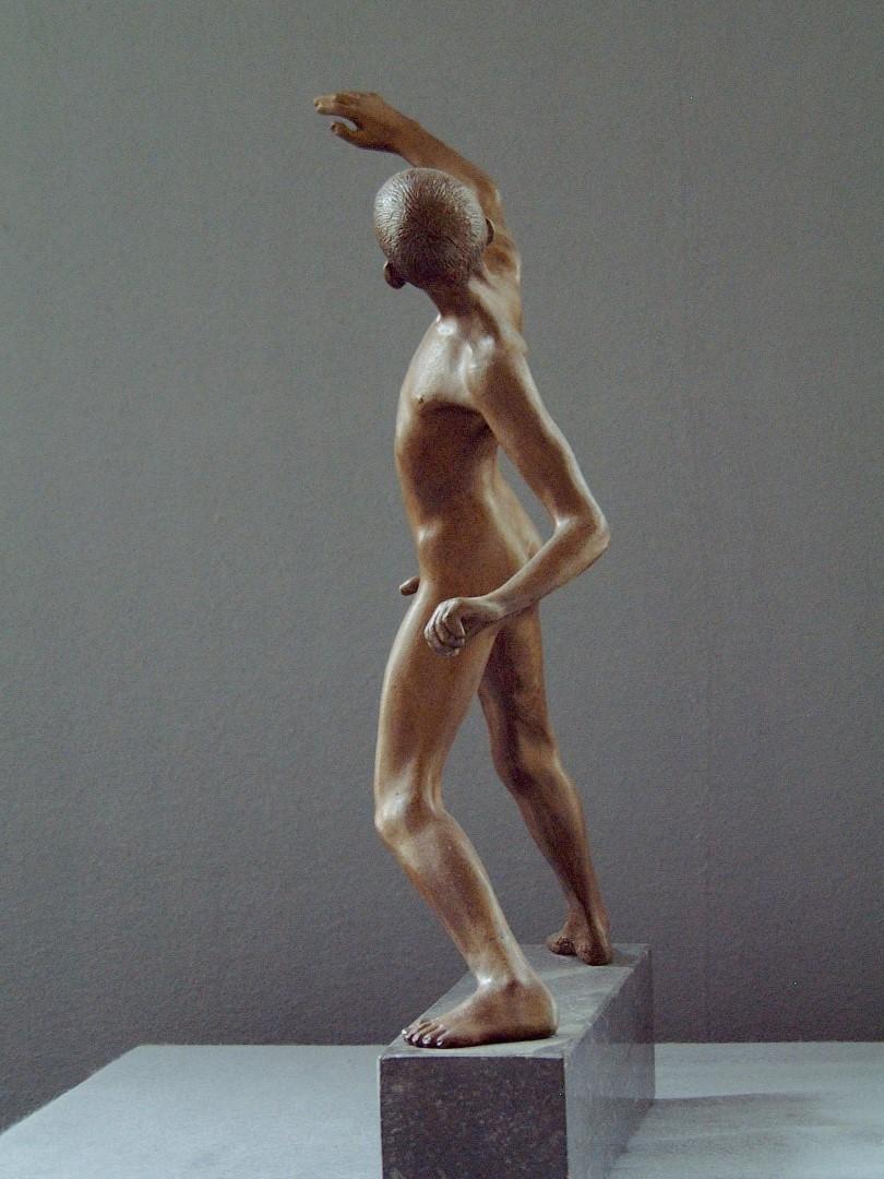 Wim van der Kant - David