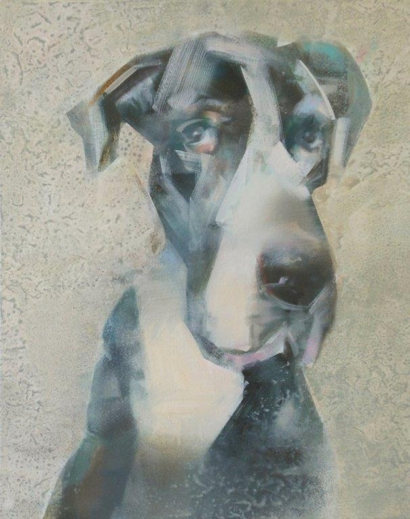 Martin Koole - Deense Dog