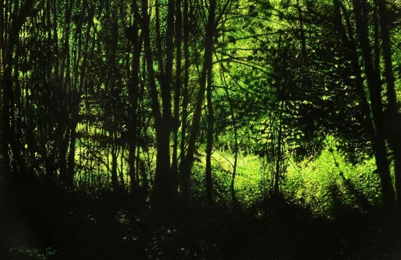 Walter Elst - Diep in het bos