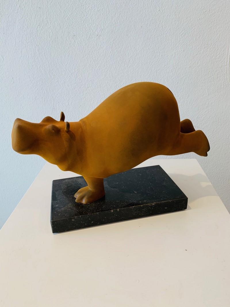 Evert den Hartog - Hippo
