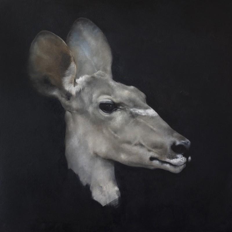 Justin Coburn - Antelope Head