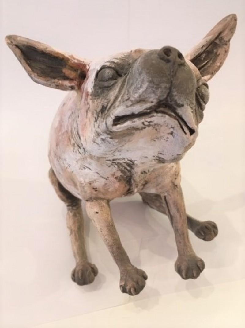 Peter Vanbekbergen - Hond zittend