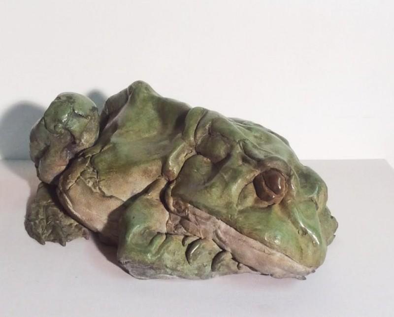 Pieter VandenDaele - Sleeping frog