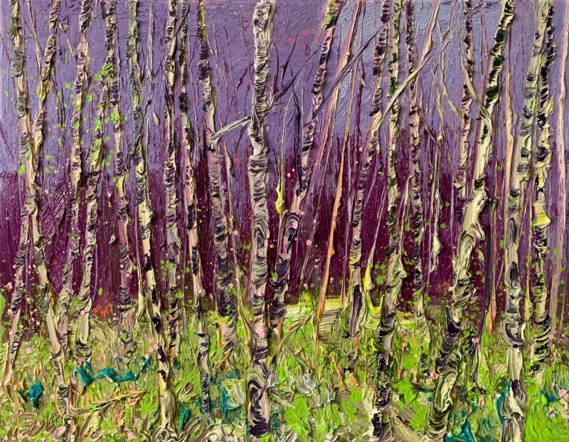 Gertjan Scholte-Albers - Purple Sky Birches