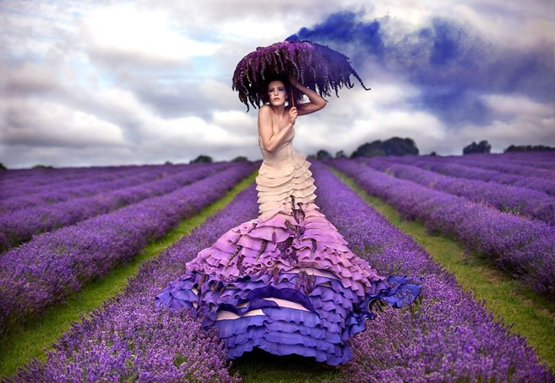 Kirsty Mitchell - the Lavender Princess