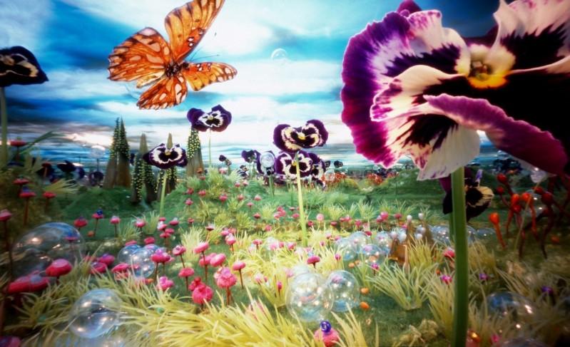 Bethany de Forest - Viola Vlinder