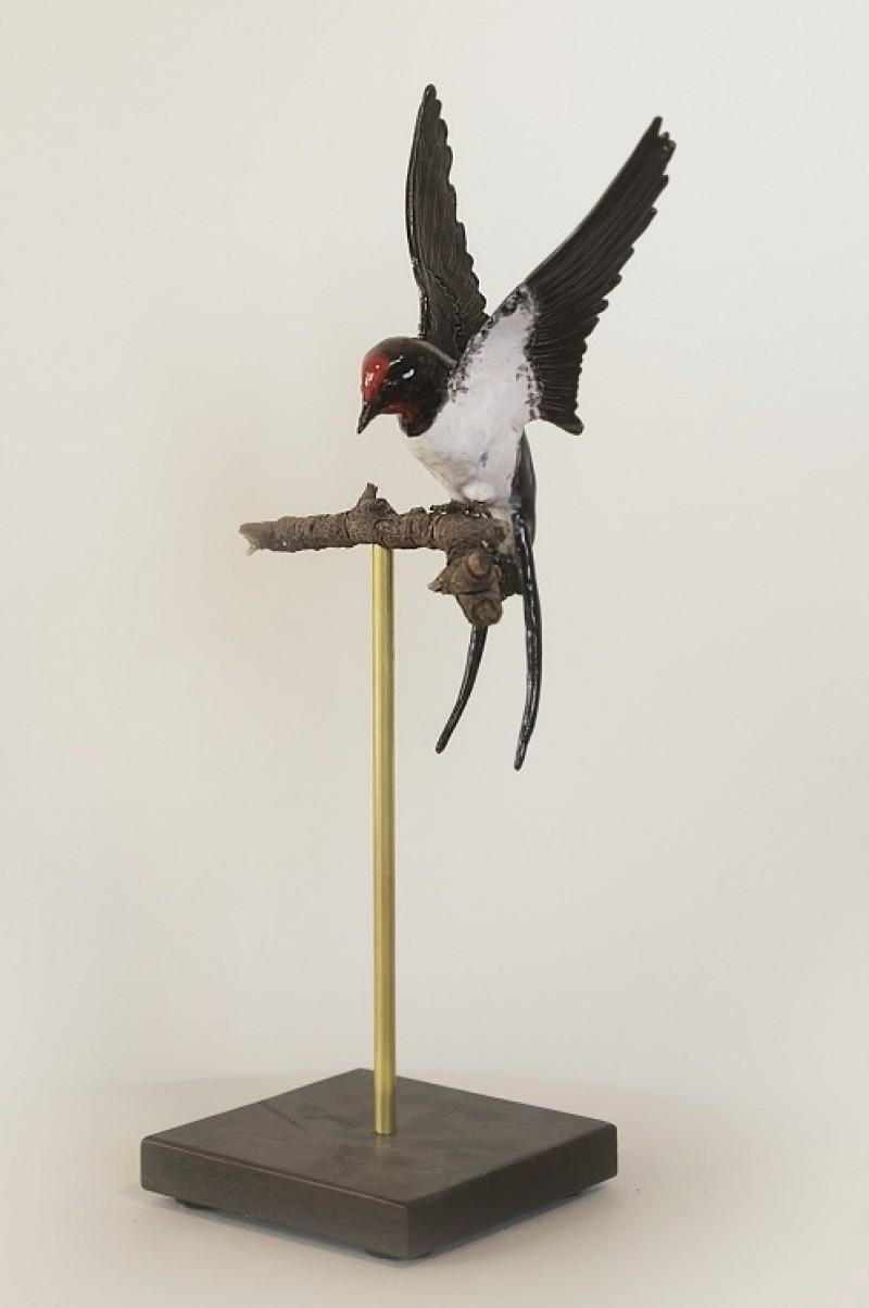 Geert Schuurman - Vliegende zwaluw