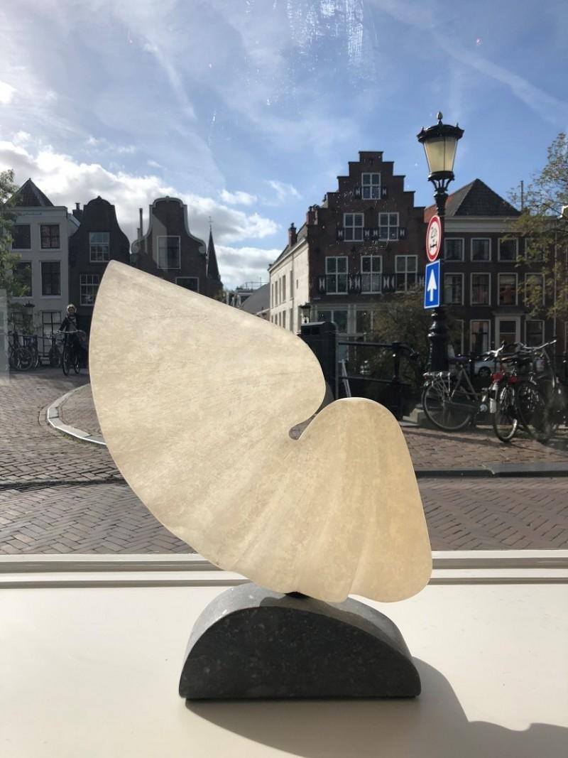 Guy Janssen - Zonder titel